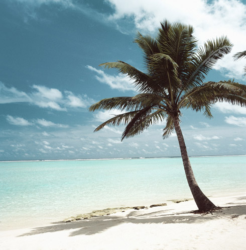 my desert island day one essay The books i have chosen for this are robinson crusoe by daniel defoe  my essay i will be looking at several things  people stranded on a desert island.